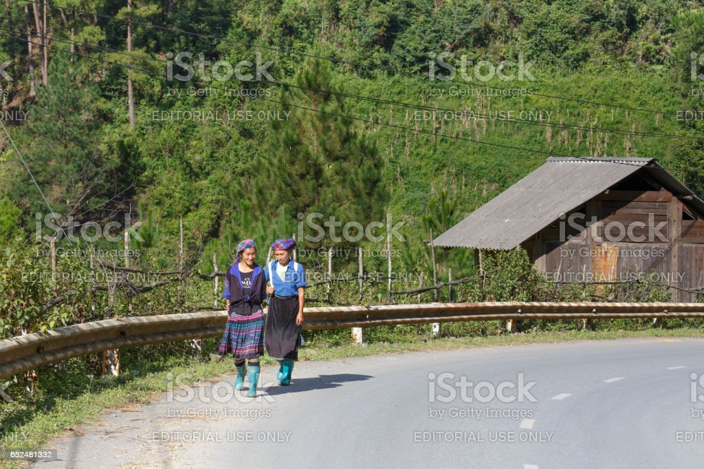 two ethnic minority women H'mong carrying firewood and agriculture product home on feet in Mu Cang Chai plateau, north of Vietnam. stock photo