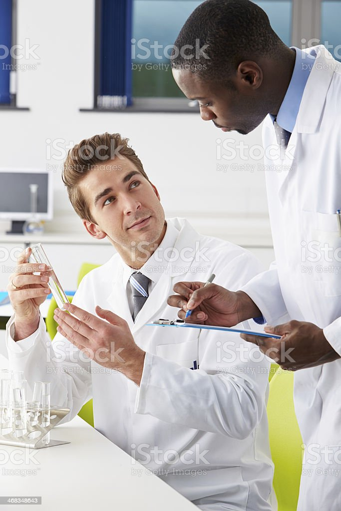Two ethnic technicians working in a laboratory together royalty-free stock photo