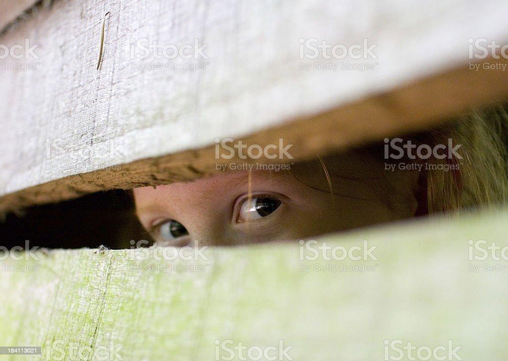 Two eyes peeping stock photo