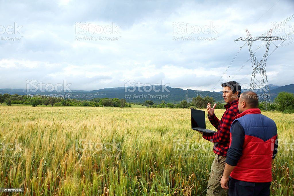 Two Farmer with laptop in wheat field stock photo