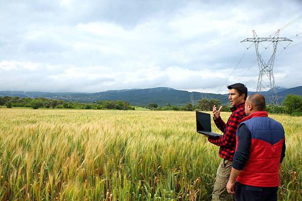 Dos agricultor con ordenador portátil en el campo de trigo - foto de stock