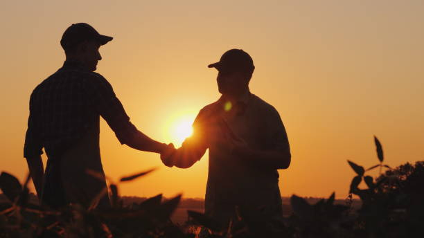 two farmers talk on the field, then shake hands. use a tablet - farmer foto e immagini stock