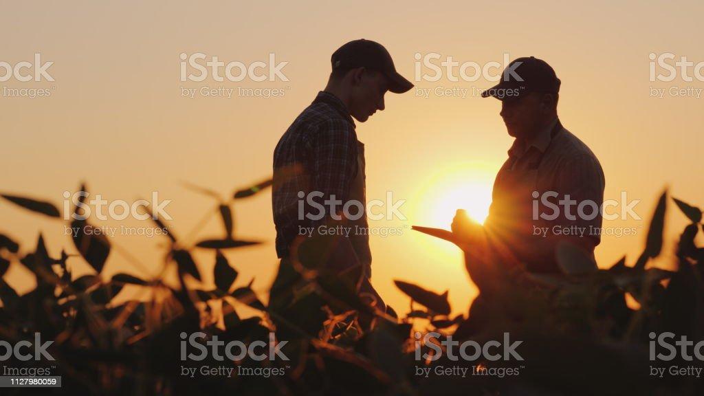 İki çiftçi sahada konuşuruz. Bir tablet kullanmak - Royalty-free ABD Stok görsel