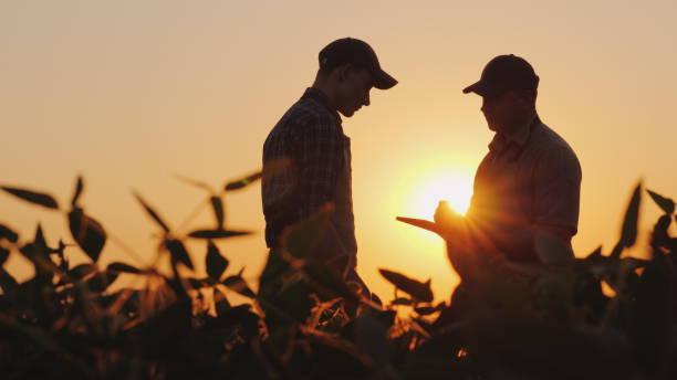 두 농민 필드에 얘기. 태블릿을 사용 하 여 - 농업 뉴스 사진 이미지