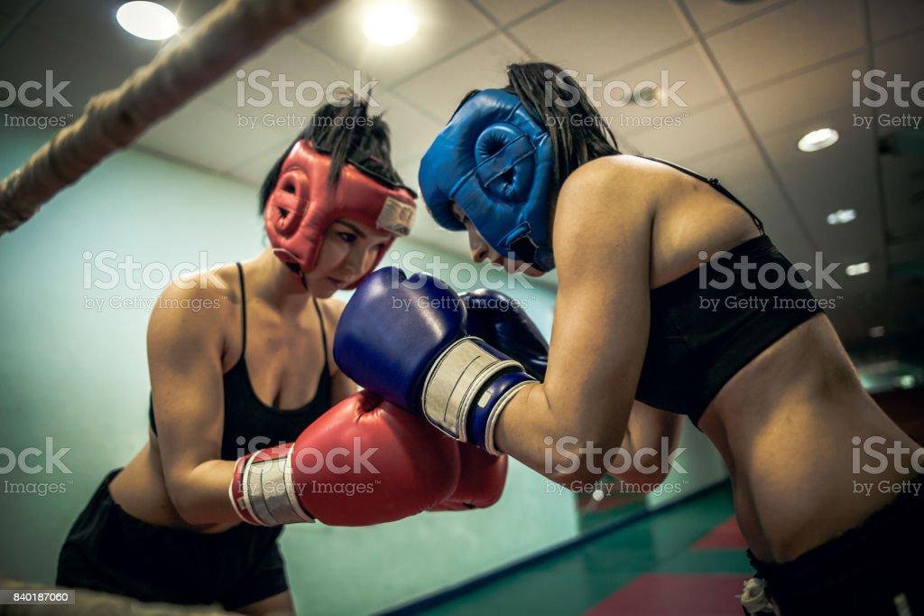 Dois pugilistas femininas cumprimentando uns aos outros no ringue - foto de acervo