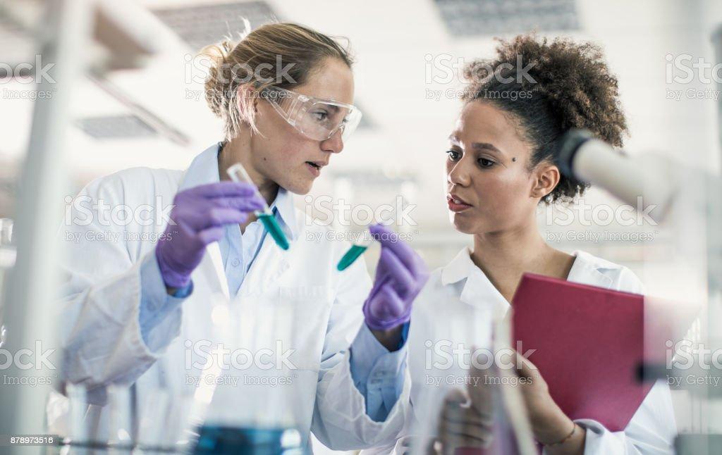 Zwei weibliche Wissenschaftler arbeiten im Labor – Foto