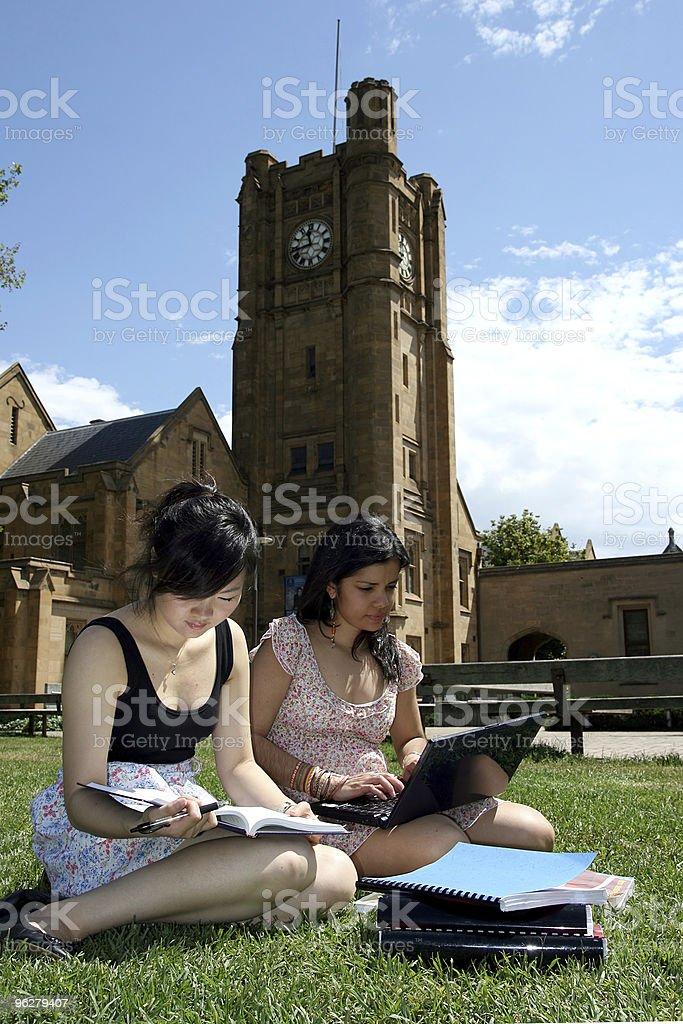 Due studentesse lavorando insieme. - Foto stock royalty-free di 20-24 anni