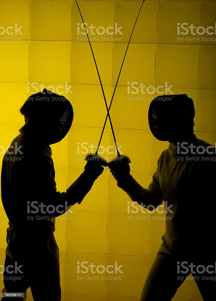 Two Fencers Vertical royalty-free stock photo