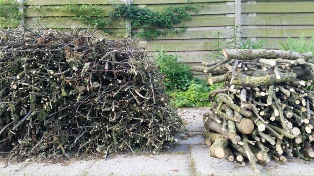 Two firewood stacks stock photo