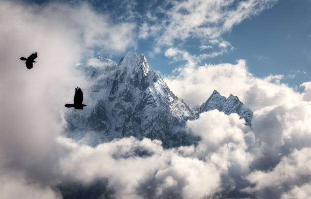 Two flying birds against majestical Manaslu mountain with snowy peak in clouds in sunny bright day in Nepal. Landscape with beautiful high rocks and blue cloudy sky. Nature background. Fairy scene stock photo