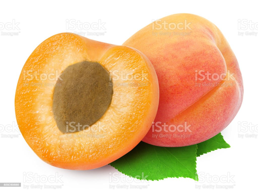 Two fresh apricots and leaves. stock photo