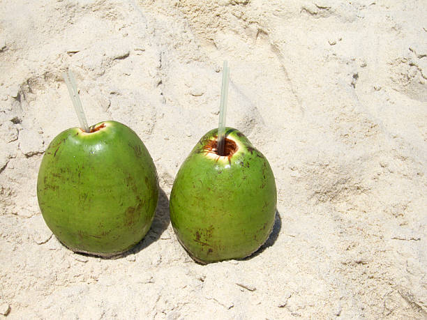 """Two Fresh Green Coconuts Coco Gelado on Sand Brazilian Beach Two fresh green Brazilian coconuts with straws (aka """"coco gelado"""") sit on the sand in Ipanema Beach in Rio de Janeiro, Brazil gelado stock pictures, royalty-free photos & images"""