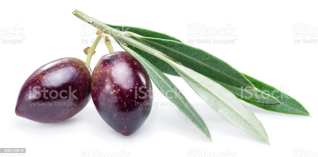 Two fresh olives with leaves on the white background. stock photo