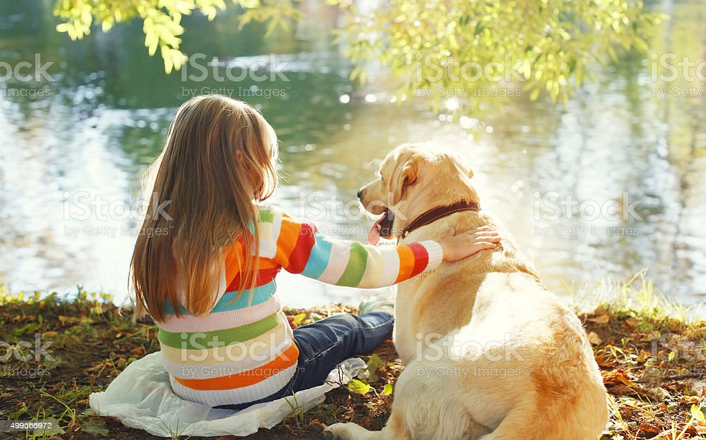 Two friends, child with Labrador retriever dog sitting in sunny royalty-free stock photo