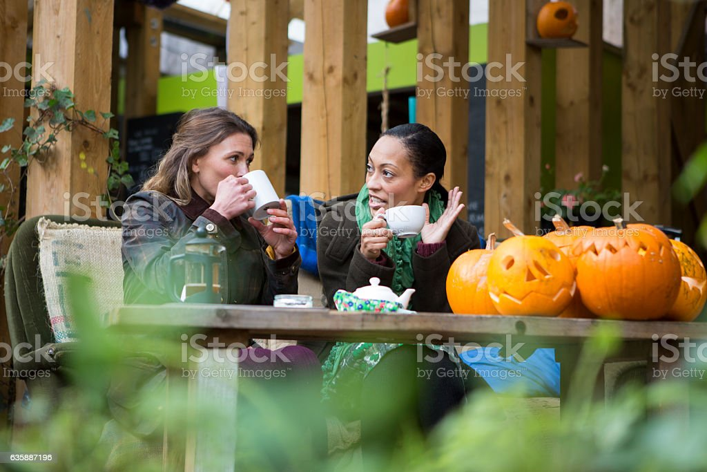 Two Friends Coffee in the Garden stock photo
