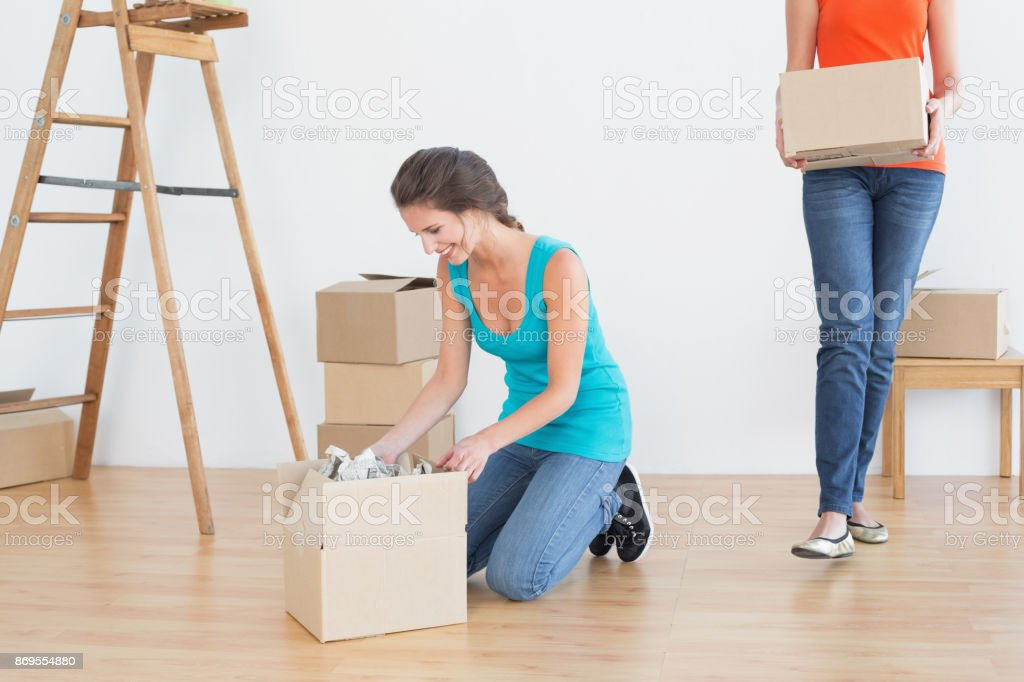Two friends moving together in a new house stock photo