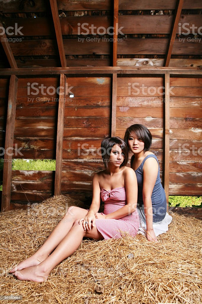 Two Friends Sitting in a Pile of Hay stock photo