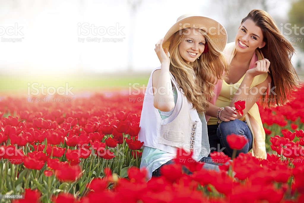 two friends sitting in the middle of tulip field stock photo