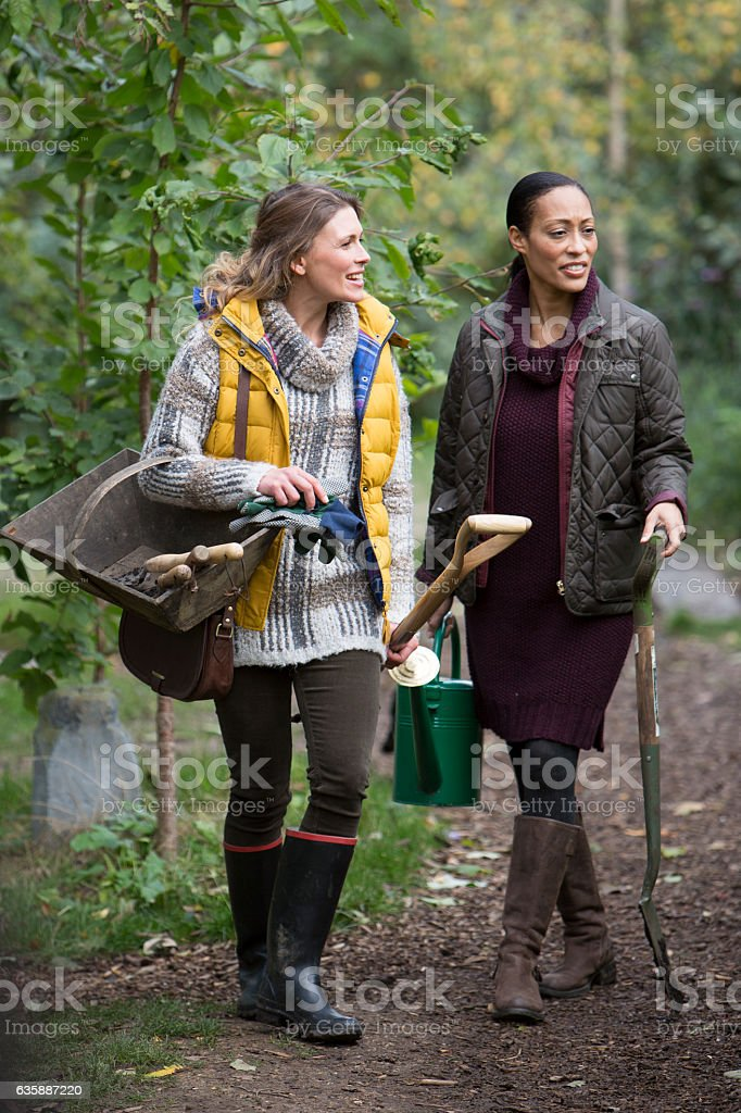 Two Friends Walking in Garden and Chatting stock photo