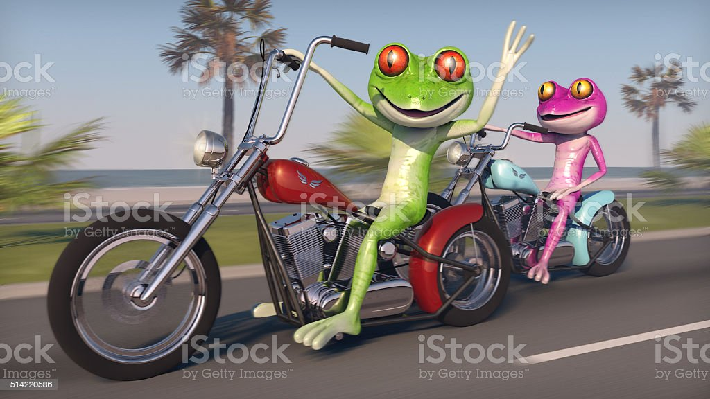 Two Frogs Riding Motorcycles stock photo
