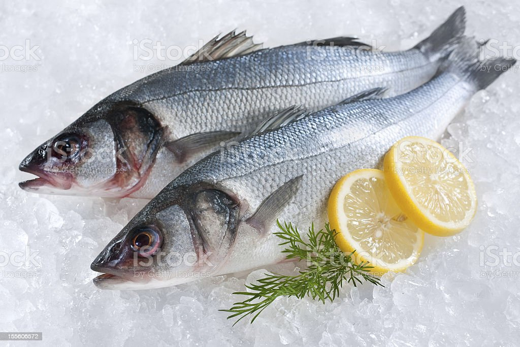 Two full sea bass fish on ice with lemon garnish stock photo