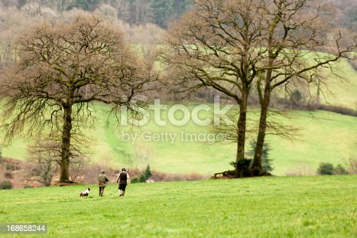 Two members of a game shooting party cross a field, Devon, UK