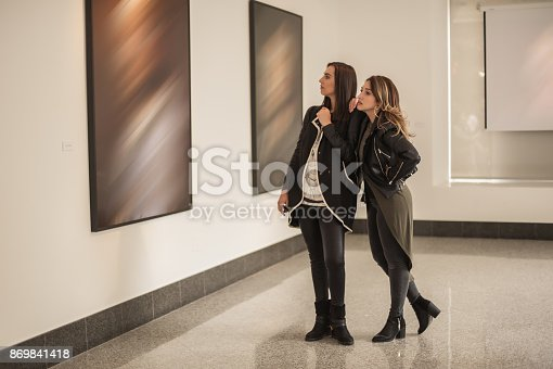 istock Two girl friends looking at modern painting in art gallery 869841418