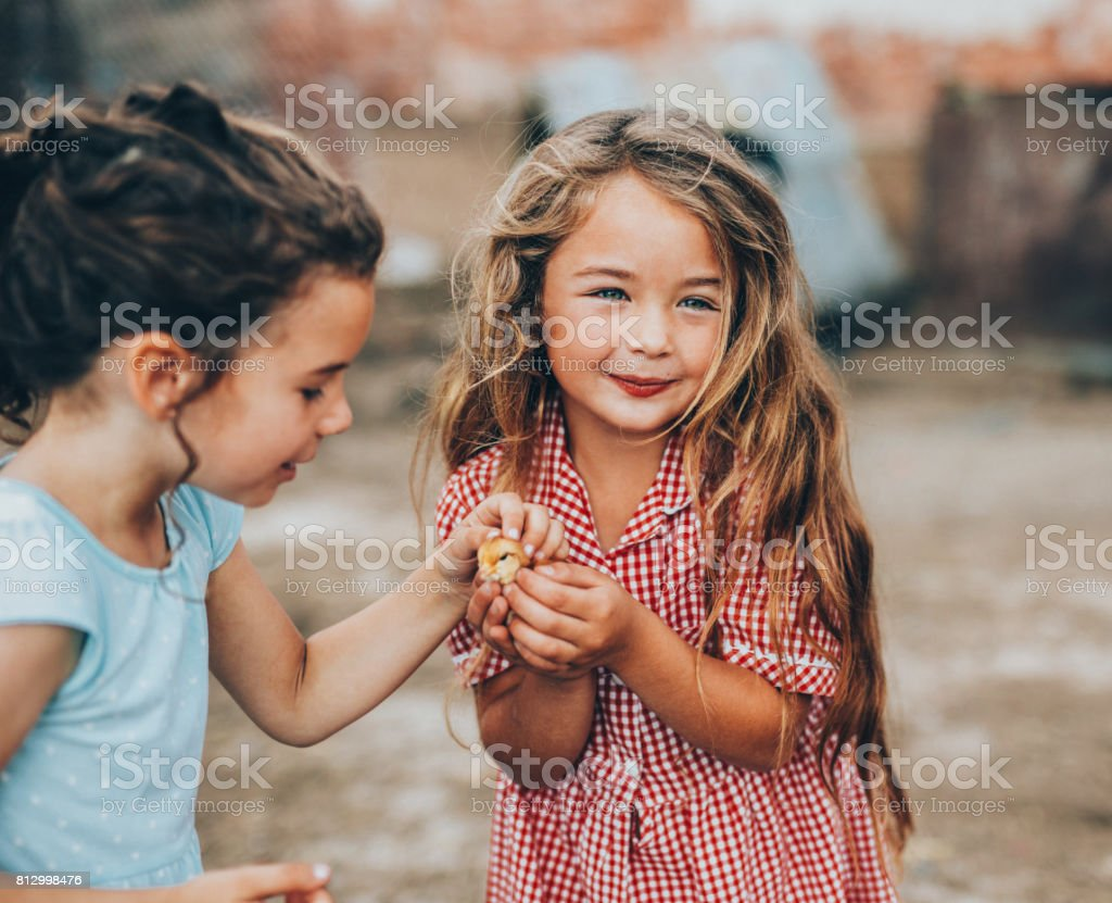 Two girls petting a little chicken stock photo