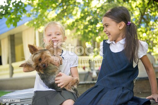 Two girls playing with a dog in the park