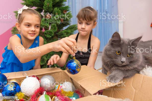Two girls pull christmas toys out of the box and show the cat picture id1093377126?b=1&k=6&m=1093377126&s=612x612&h=djh2hk1wgu50jfd0mvknyf 2syphwti3jhlp1k4 6ia=