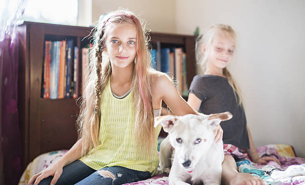 Two girls, sisters, playing with dog in kids room stock photo