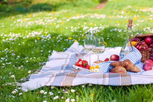 zwei gläser und eine flasche wein. picknick auf dem grünen rasen im park. gutes wochenende. frühling. - kariertes hintergrundsbild stock-fotos und bilder