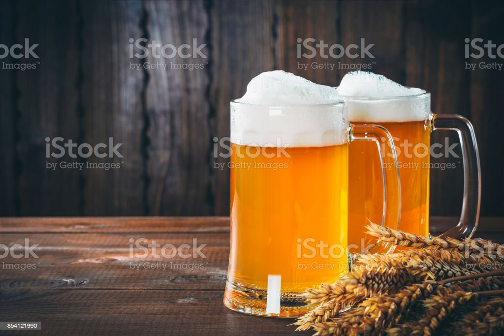 Two glasses of light beer with spikelets of barley on the wooden background. Beautiful background of the Oktoberfest stock photo