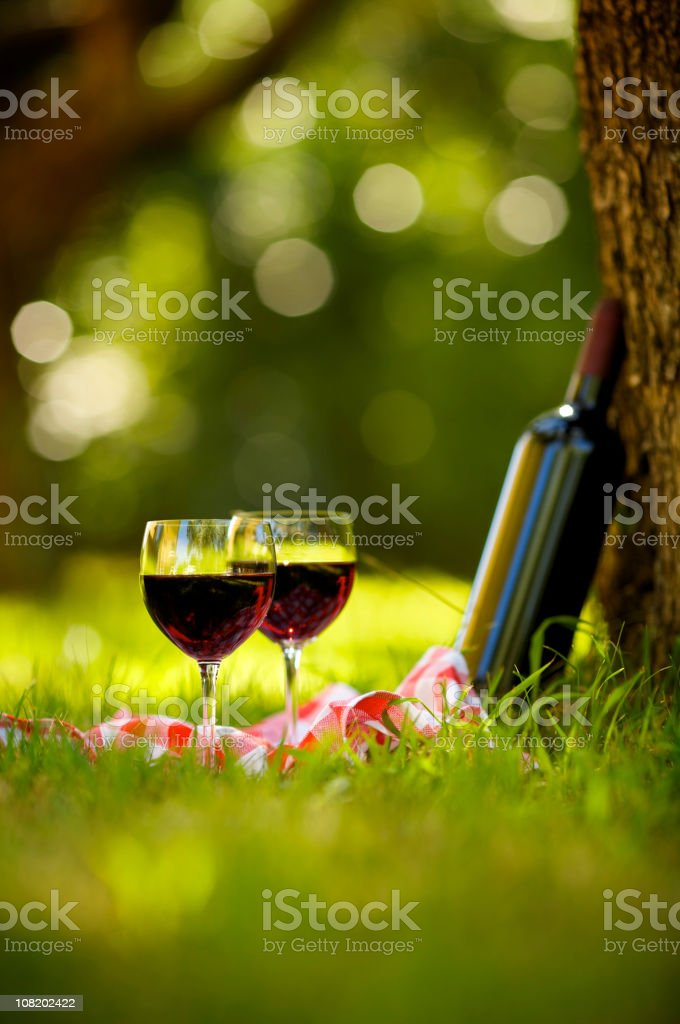 Two Glasses of Red Wine at Picnic royalty-free stock photo