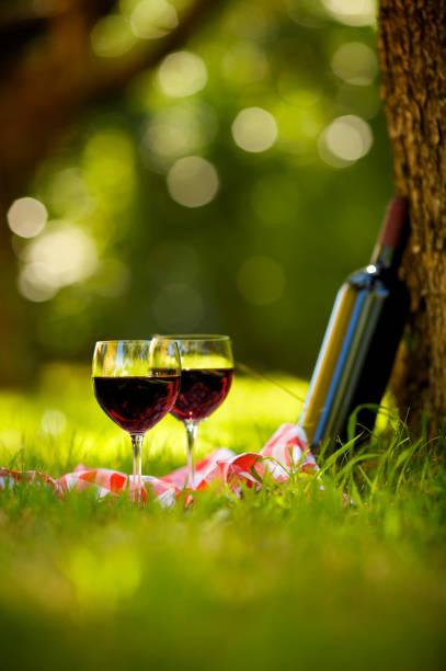Zwei Gläser Rotwein auf Picknick – Foto