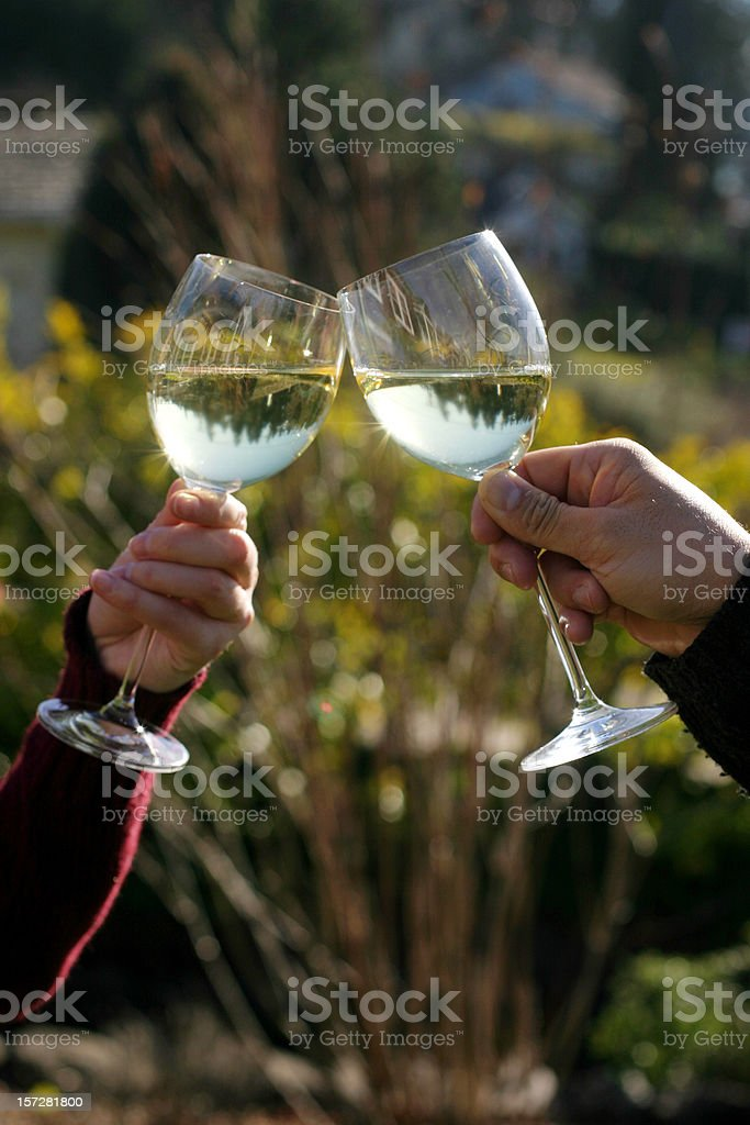 Two glasses of white wine raised in a toast outdoors royalty-free stock photo