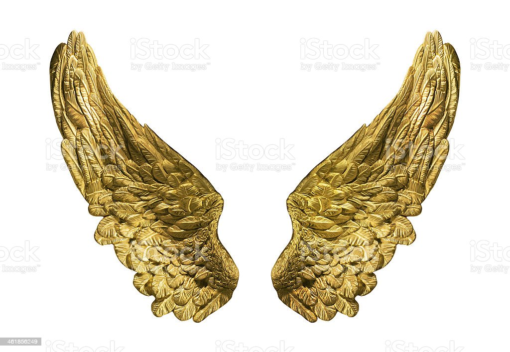 Two golden wings isolated on white stock photo