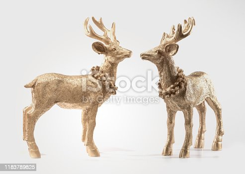 istock Two Goldon Red deers, reindeer, christmas picture, isolated on white background, decoration, postcard, wall paper 1183789825