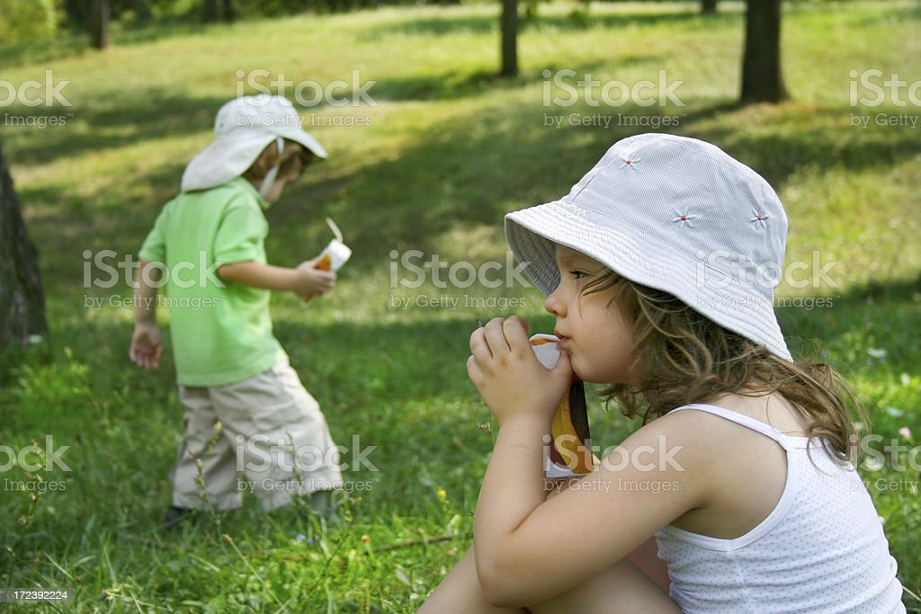 Two good summer friends royalty-free stock photo