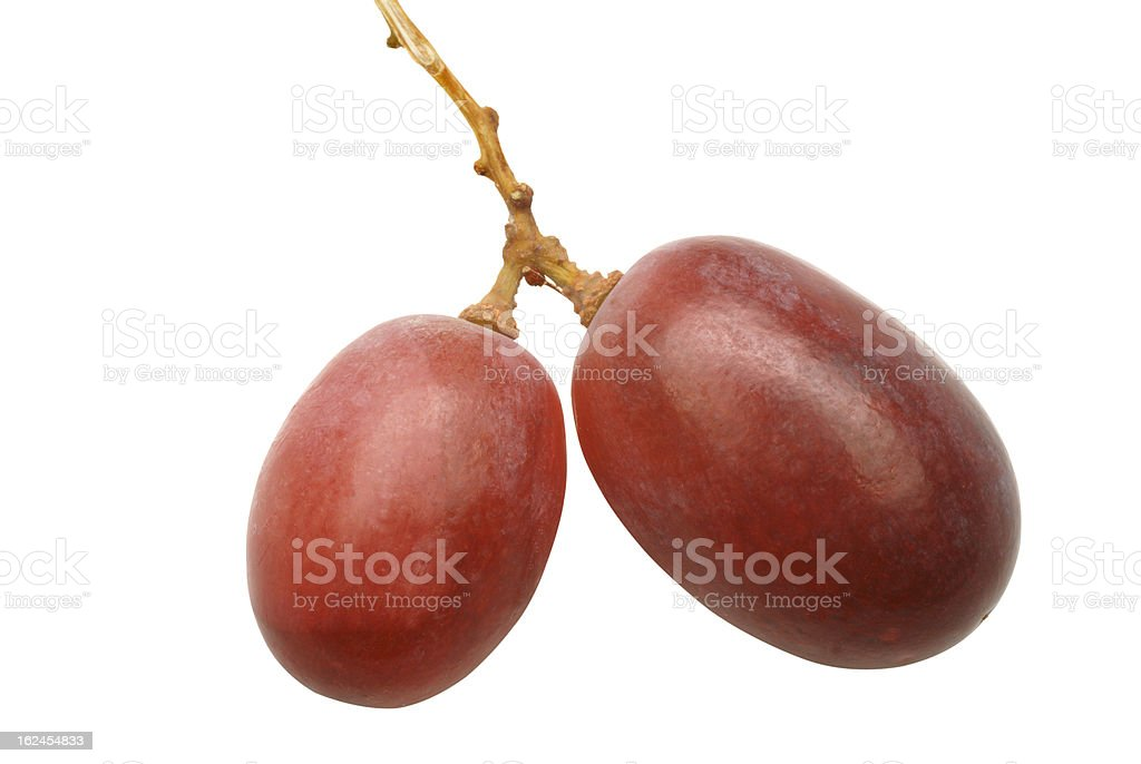 two grapes on vine-clipping path royalty-free stock photo