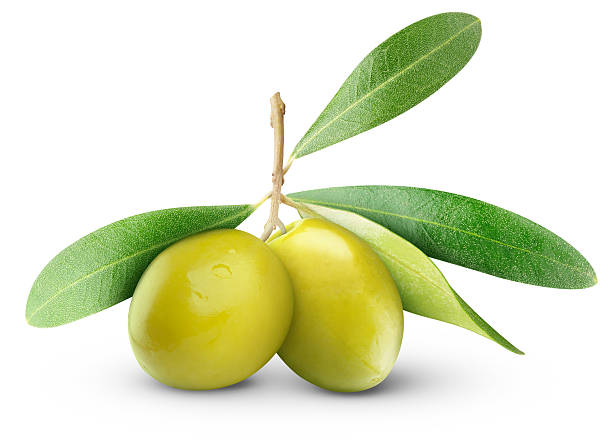 Two green olives with leaves against a white background Vector illustration: olives stock pictures, royalty-free photos & images