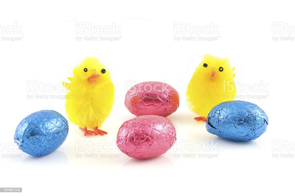 Two hairy chicks with easter egg royalty-free stock photo