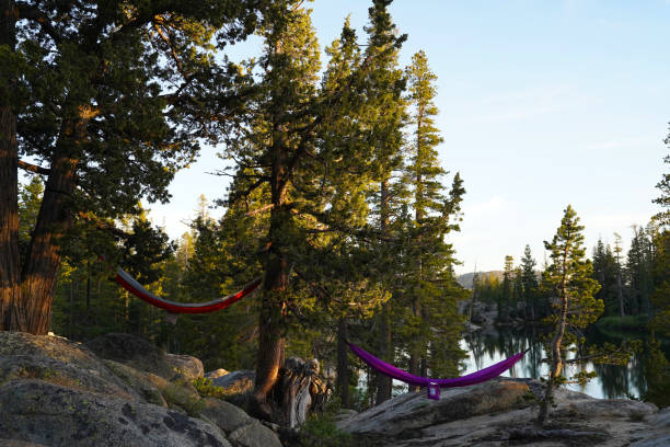 Two hammocks hang from trees next to a calm lake. stock photo