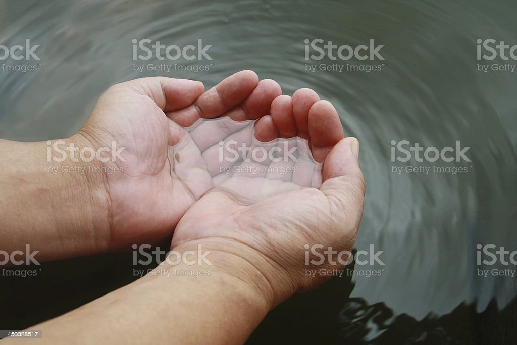 two hand watering royalty-free stock photo