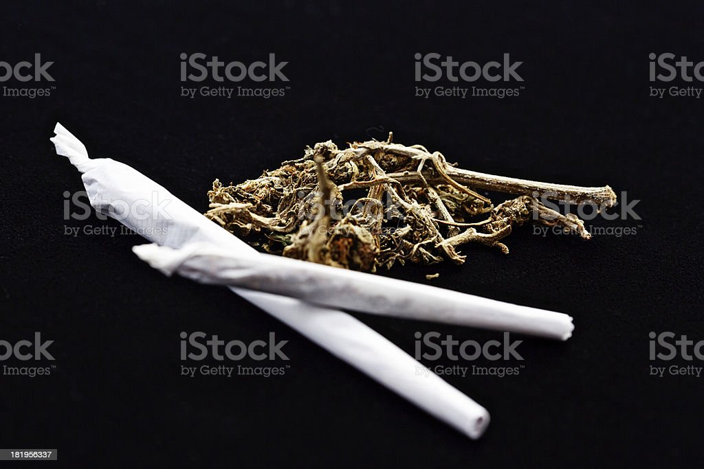 Two hand-rolled joints with raw marijuana on black stock photo