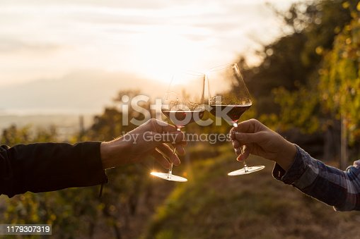 two glasses of cocktail making cheers. grapevine in Ticino