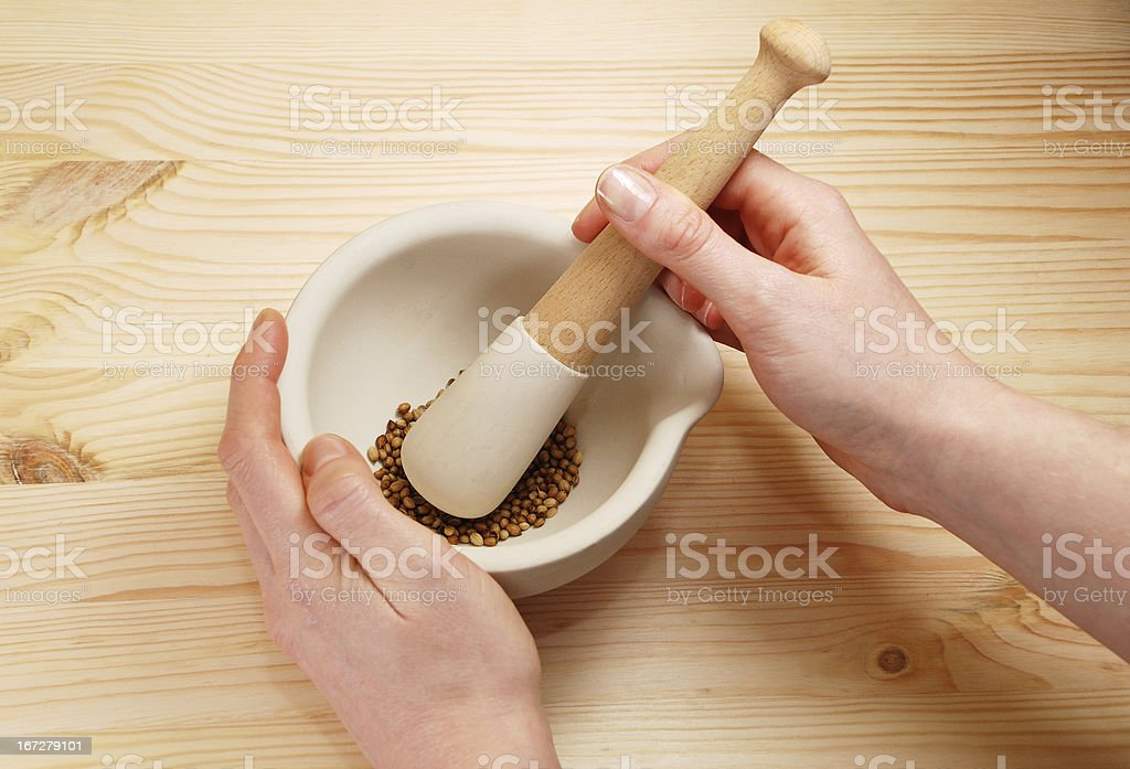 Two hands holding a pestle and mortar with coriander seeds royalty-free stock photo