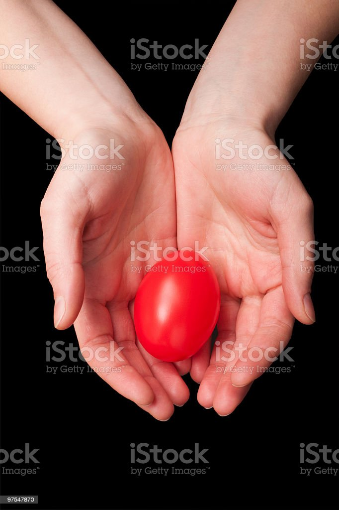 Two hands holding a red Easter egg royalty-free stock photo