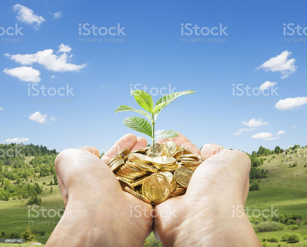 two hands holding  coins and  new plant stock photo