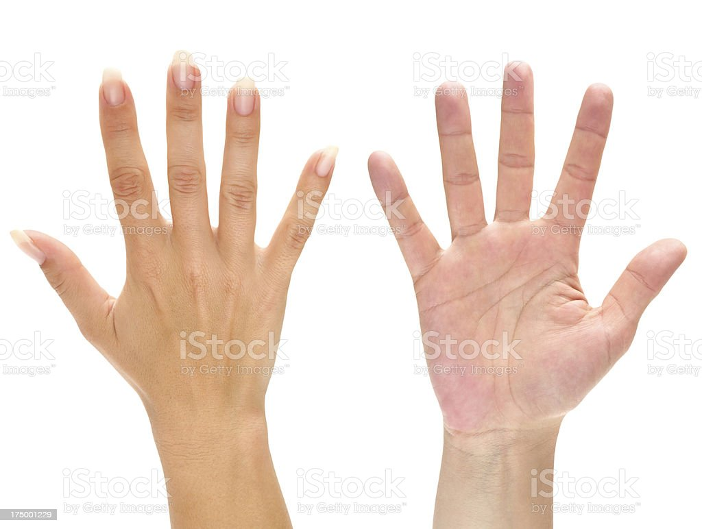 Two Hands stock photo
